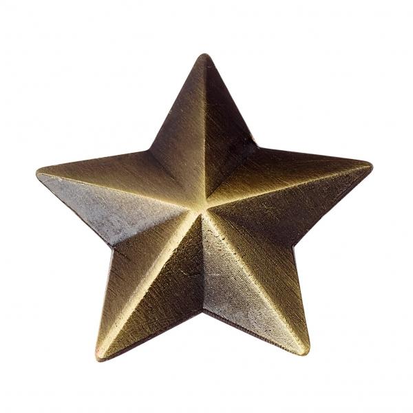 Speldjes Verzamelingen Round School Merit Star Badge